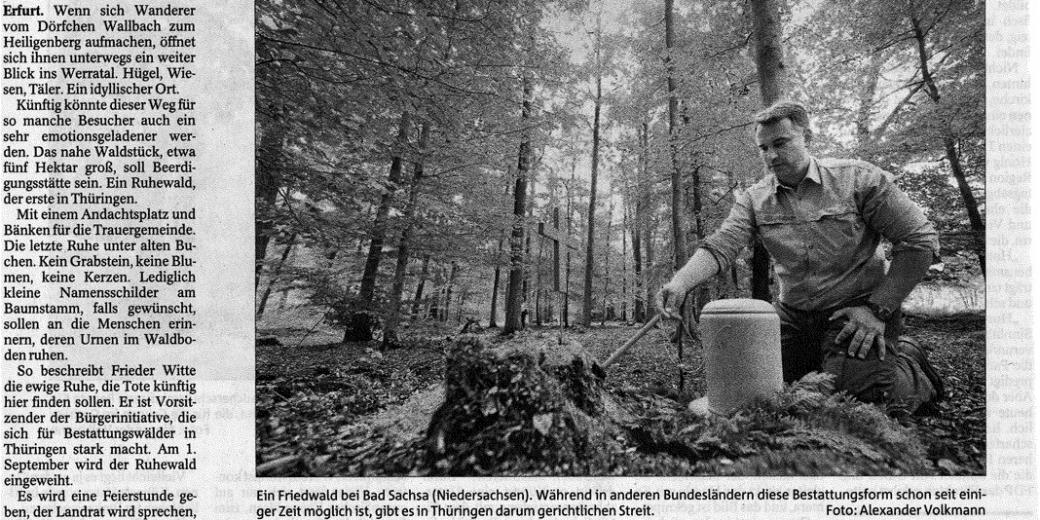 Letzte Ruhe unter uralten Bäumen: Erster Bestattungswald öffnet