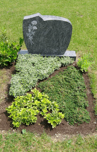 Musterpflanzfläche 2