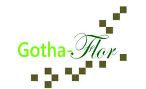 Gotha Flor - Grabpflege